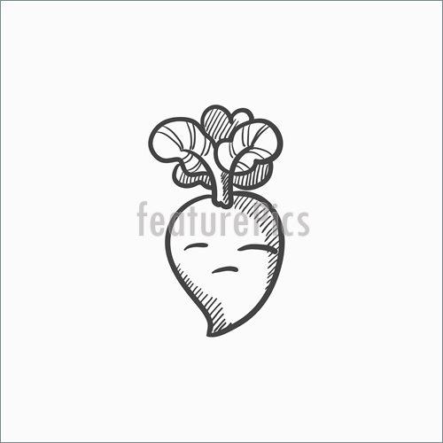 500x500 Illustration Of Beet Sketch Icon.