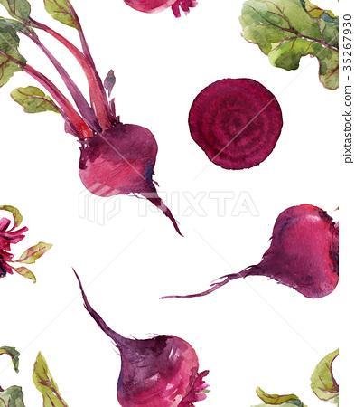 393x450 Watercolor Beet Vector Pattern