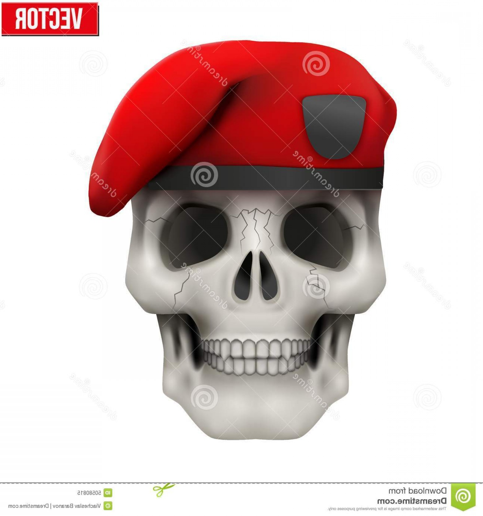 1560x1668 Stock Illustration Human Skull Military Maroon Beret Vector