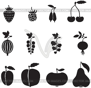 300x292 Fruits And Berries
