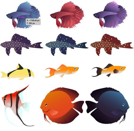 570x561 Freshwater Fish Vector Fish Clip Art Betta Fish Clip Art Etsy