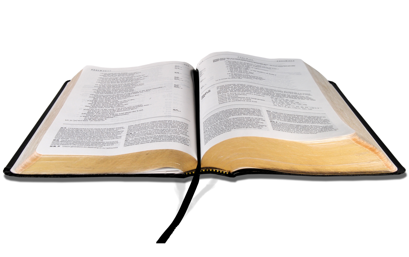 1600x1008 Use These Bible Vector Clipart