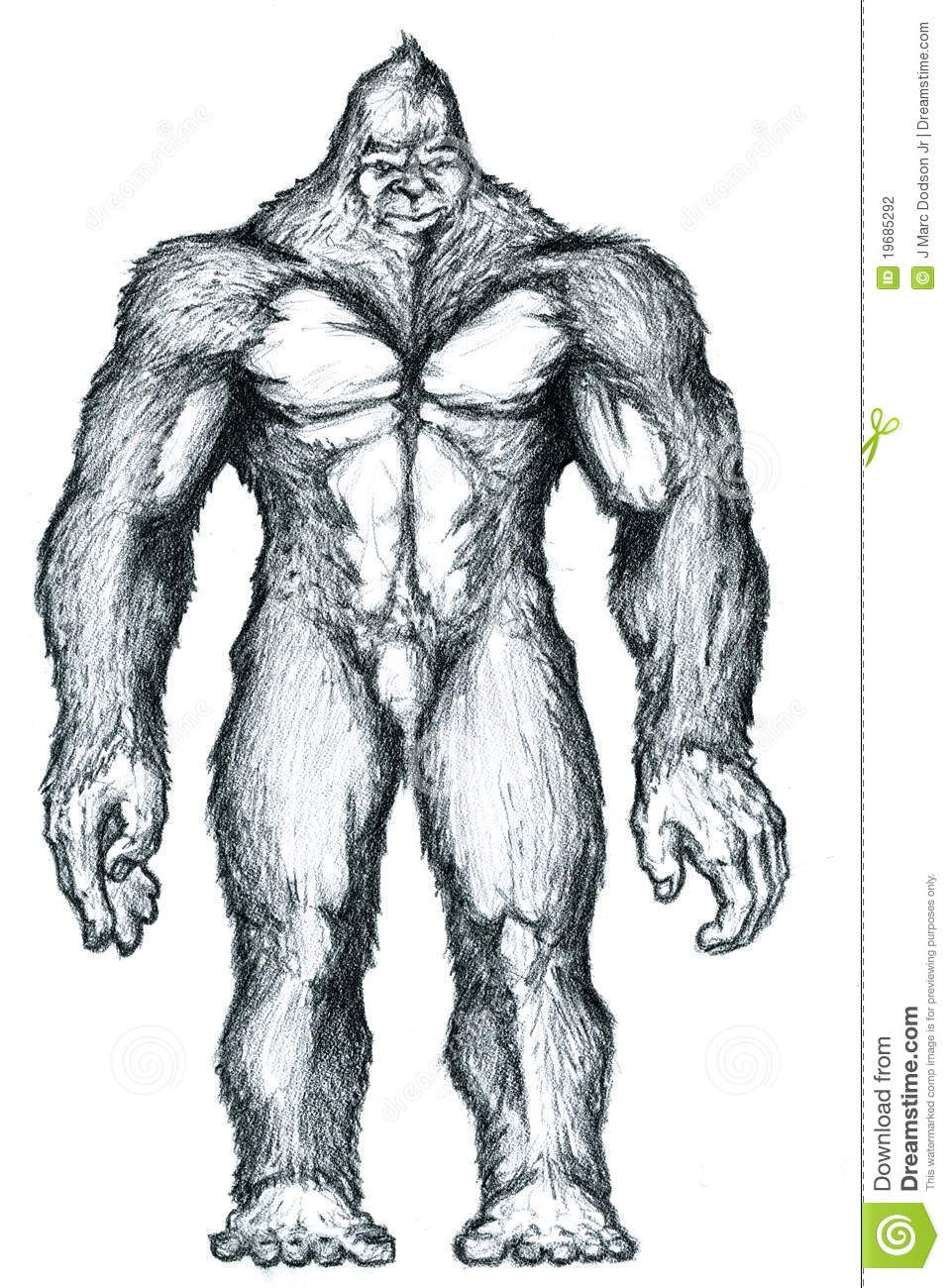 959x1300 Vector Bigfoot Images Bigfoot Drawing Drawn With Graphite On