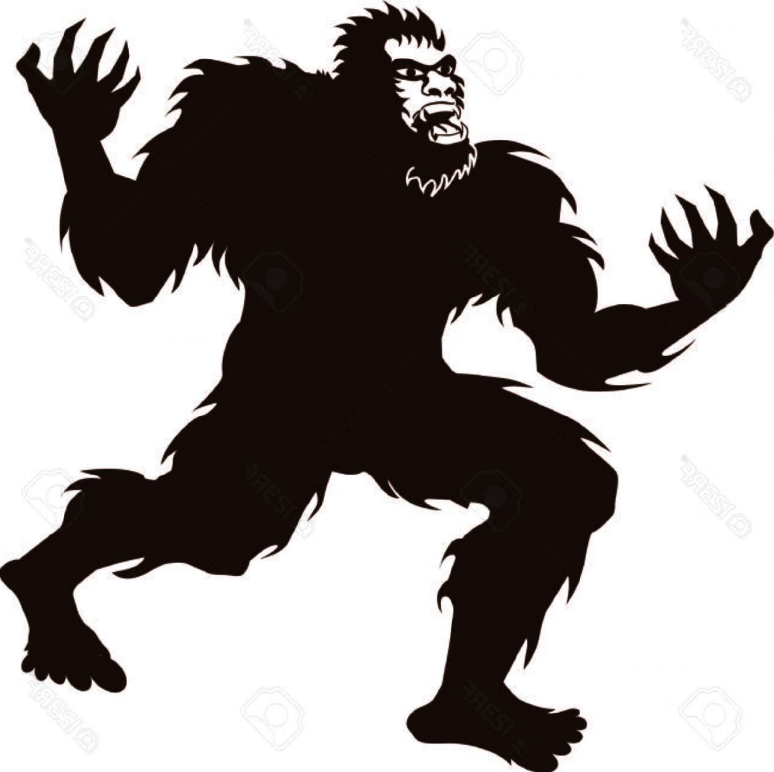 1560x1557 Photostock Vector Bigfoot Sasquatch Screaming Howling Silhouette