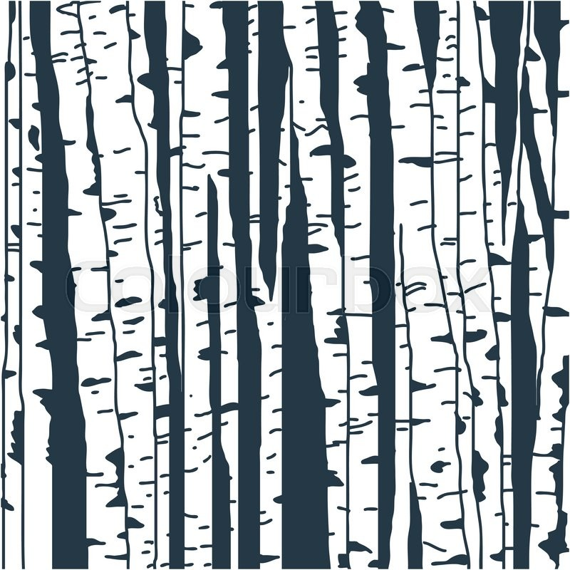 800x800 Birch Trees Background For You Design Stock Vector Colourbox
