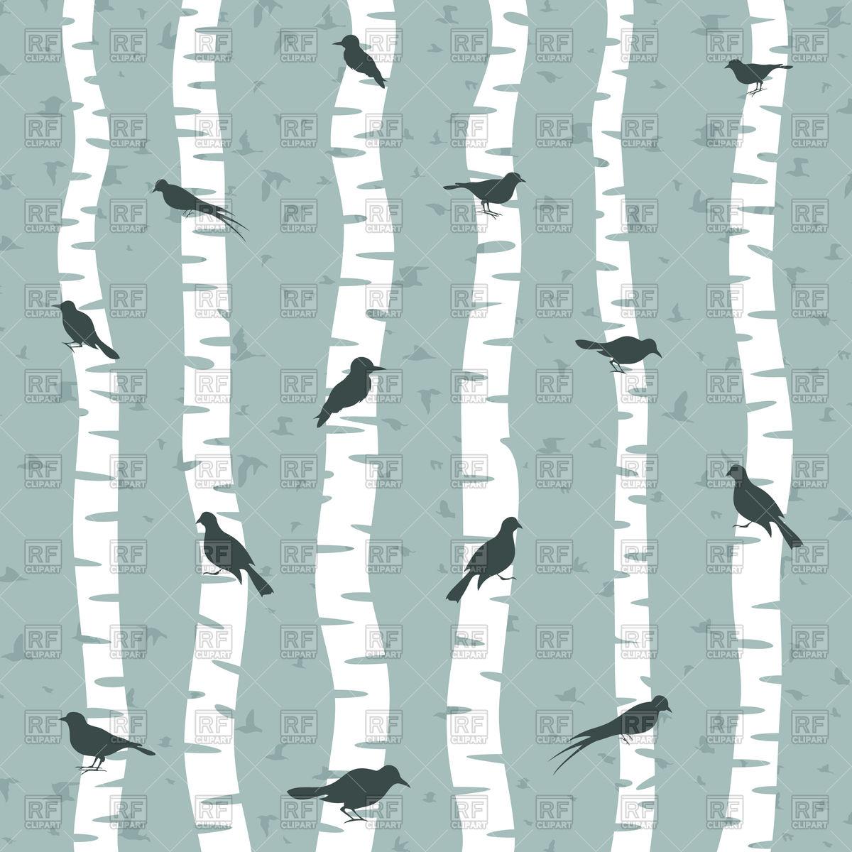 1200x1200 Bird Sits On Birch Tree