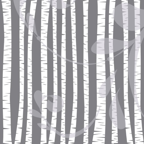 570x570 Clipart Forest Birch Tree