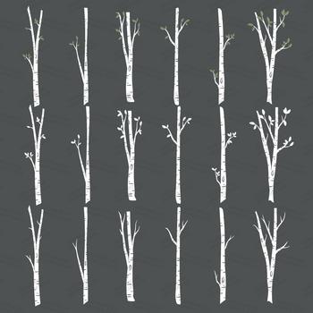 350x350 Premium Birch Tree Clipart Amp Vector Set