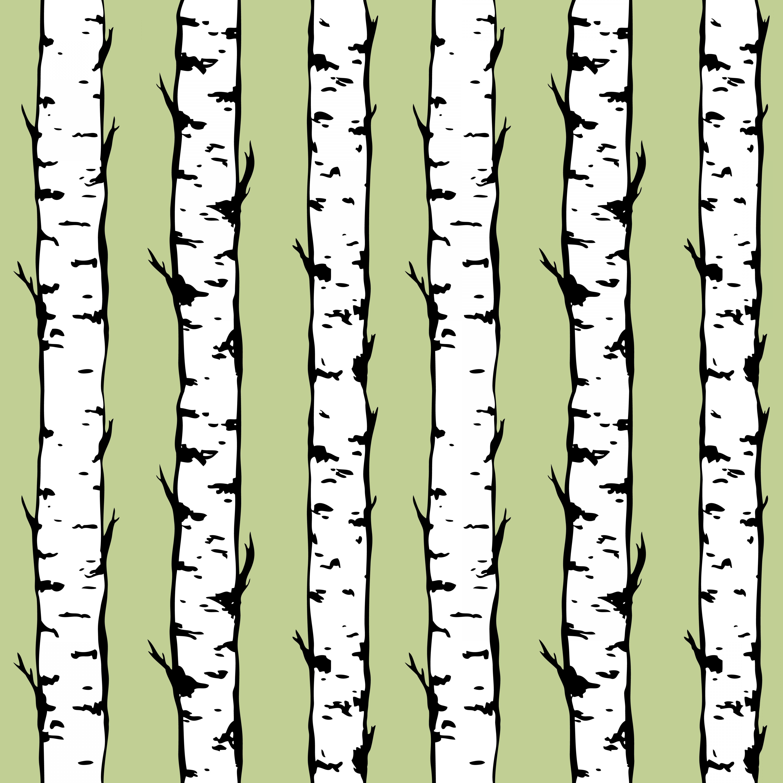 6000x6000 Stock Vector Illustration Vector Seamless Background Of Birch