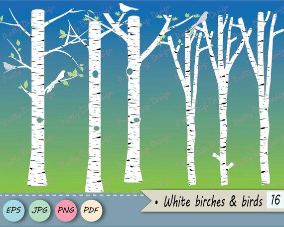 570x456 White Birch Clipart Tree Clipart Birch Vector Birch Png Etsy