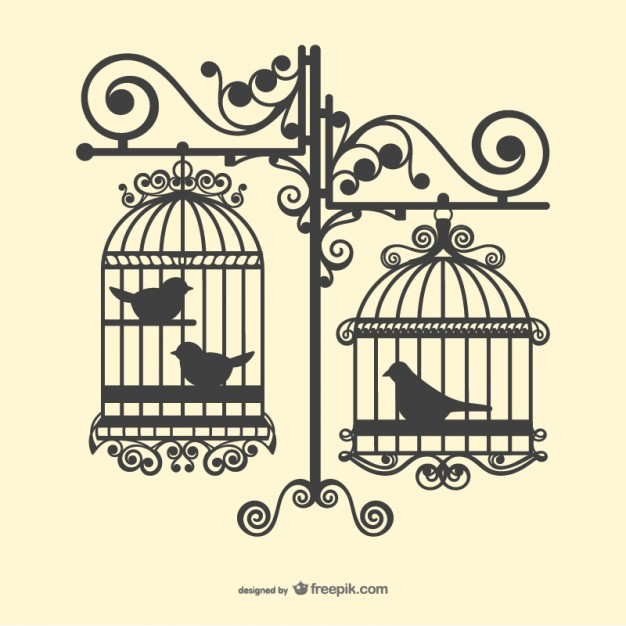 626x626 Birdcage Vectors, Photos And Psd Files Free Download