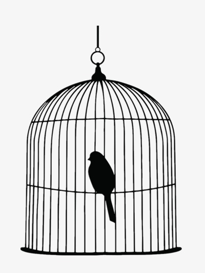 400x533 Black Birdcage Vector, Free, Fly, Birds Png And Psd File For Free