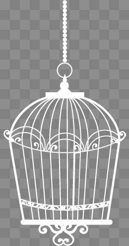260x496 Bird Cage Png, Vectors, Psd, And Clipart For Free Download Pngtree