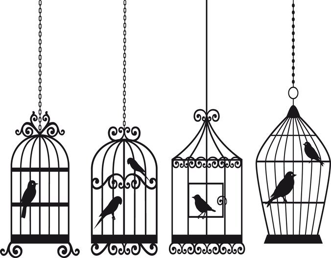 676x527 Free Bird And Birdcage Psd Files, Vectors Amp Graphics