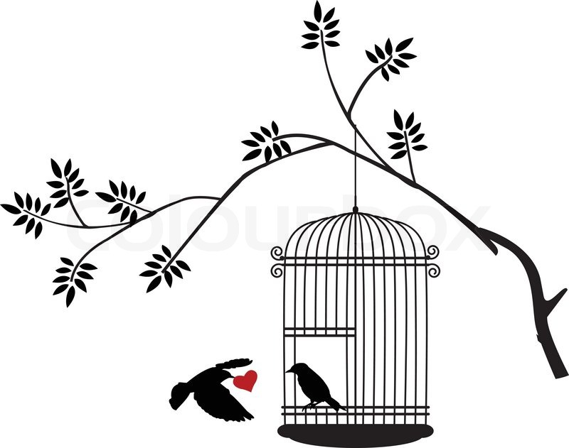 800x631 Illustration Flying Birds With A Love For The Bird In The Cage