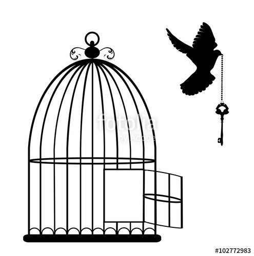 495x500 Bird Cage Vector Stock Image And Royalty Free Vector Files On