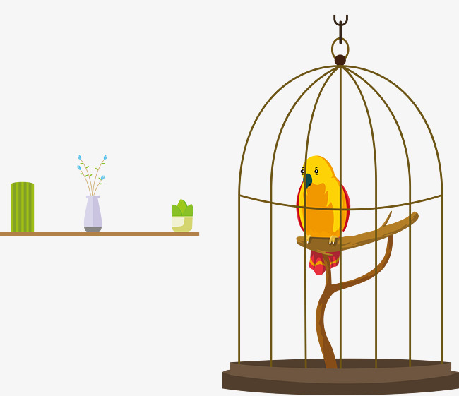 650x561 Vector Parrot Cage, Parrot, Birdcage, Vector Png And Vector For