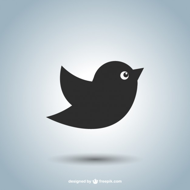 626x626 Bird Icon Vector Free Download