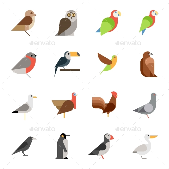 590x590 Flat Design Vector Birds Icon Set By Kuroksta Graphicriver