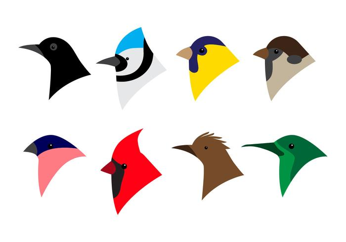 700x490 Bird Head Icon Vector