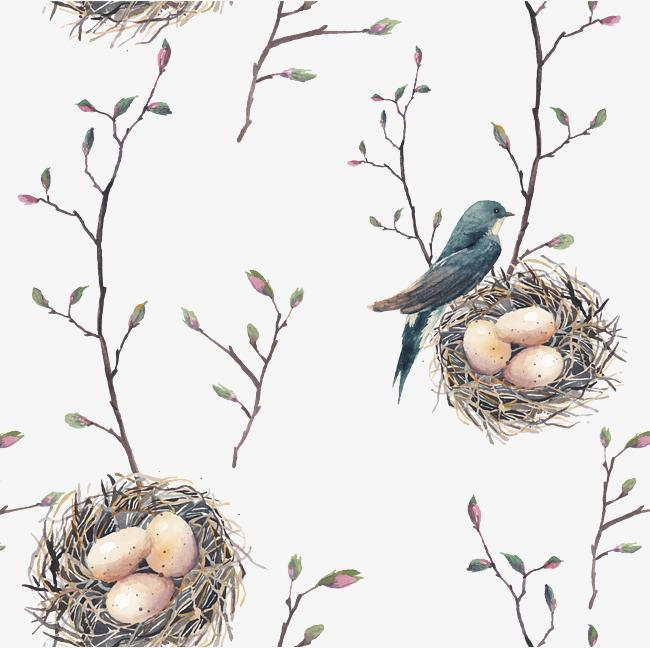 650x648 Cartoon Bird Nest Vector, Cartoon Vector, Bird Vector, Cartoon
