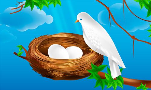 500x300 Premium Tutorial Vector Bird Nest