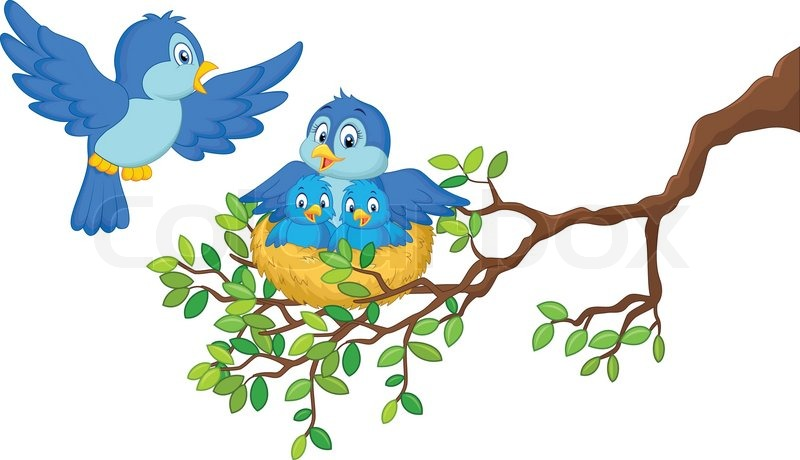 800x460 Vector Illustration Of Birds With Her Two Babies In The Nest