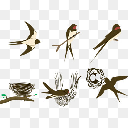 260x260 Bird Nest Png, Vectors, Psd, And Clipart For Free Download Pngtree