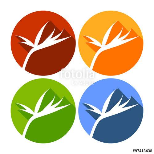 500x500 Bird Of Paradise Flower Circle Flat Icons Stock Image And Royalty