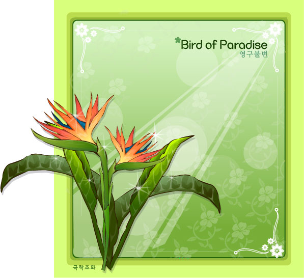 597x546 Bird Of Paradise Flower Frame Vector Free Download