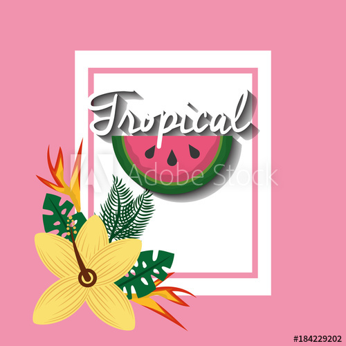 500x500 Tropical Watermelon Fruit Hibiscus And Bird Of Paradise Vector