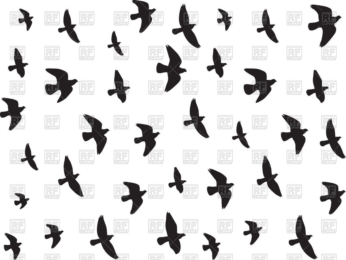 1200x901 Flying Birds Silhouettes Vector Image Vector Artwork Of