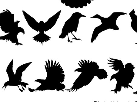 452x336 Vector Bird Cdr Free Vector Download (4,320 Free Vector) For
