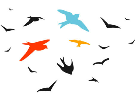 452x336 Bird Vector Set