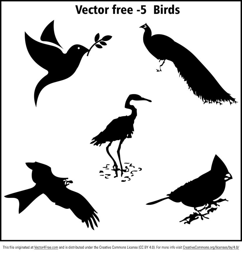 829x869 Free Birds Vector Graphics