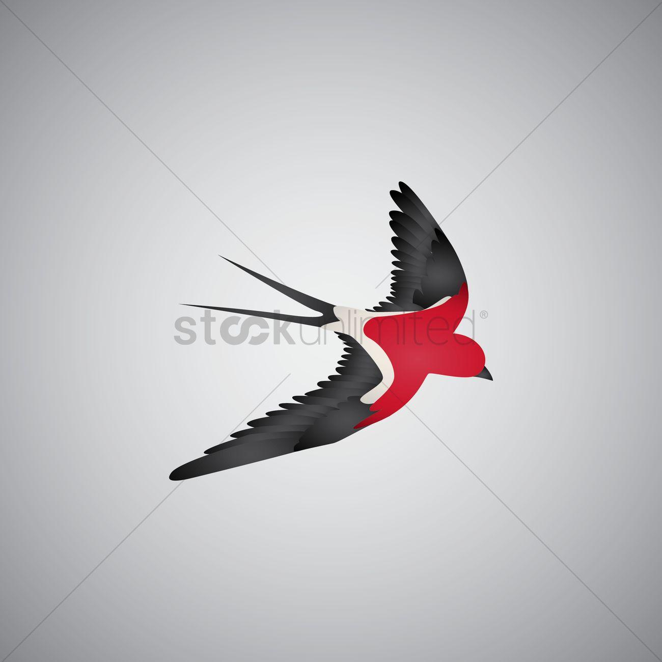 1300x1300 Free Swift Bird Vector Image