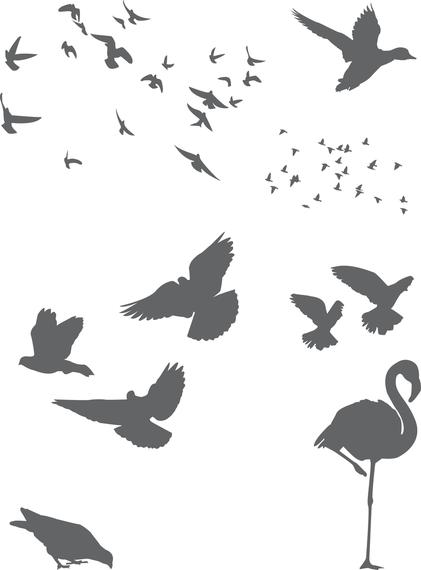 421x570 Free Vector Birds