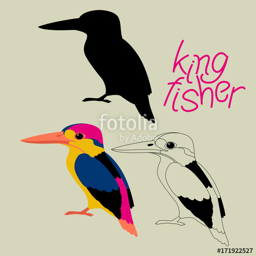 500x500 Kingfisher Bird Vector Illustration Black Silhouette Line Drawing