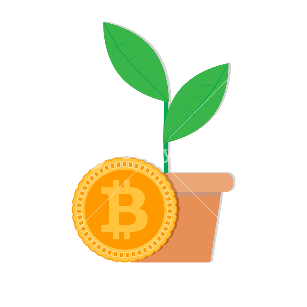 1000x1000 Growth Rate Bitcoin Vector. Bitcoin Invest In Ico, Money Financial