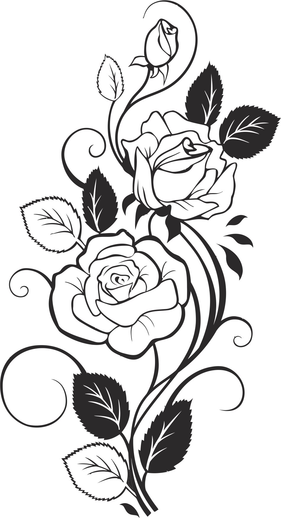 950x1749 Black And White Rose Vector Free Vector Download