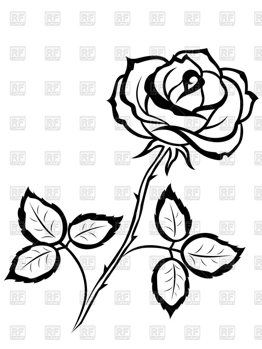 900x1200 Beautiful Black Outline Rose Vector Image Vector Artwork Of