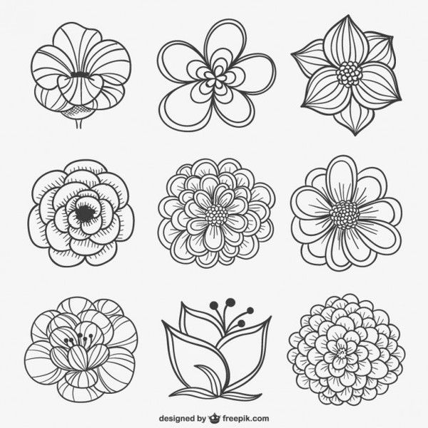 600x600 21 Black And White Flowers Clipart Vectors Download Free Vector
