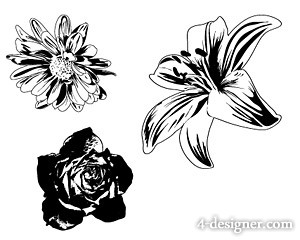 300x240 4 Designer Black And White Flowers Vector Material