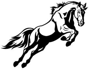 302x240 Search Photos Horseman
