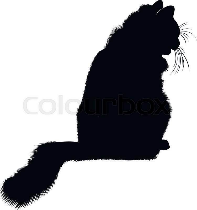 751x800 Black Cat Silhouette. Cat. Cat Animal. Animal Black Cat Silhouette