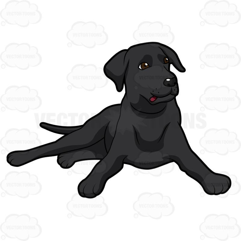 800x800 Black Labrador Lying Down With Its Head Up Clipart By Vector Toons