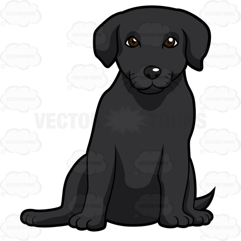 800x800 Black Labrador Puppy Sitting Clipart By Vector Toons