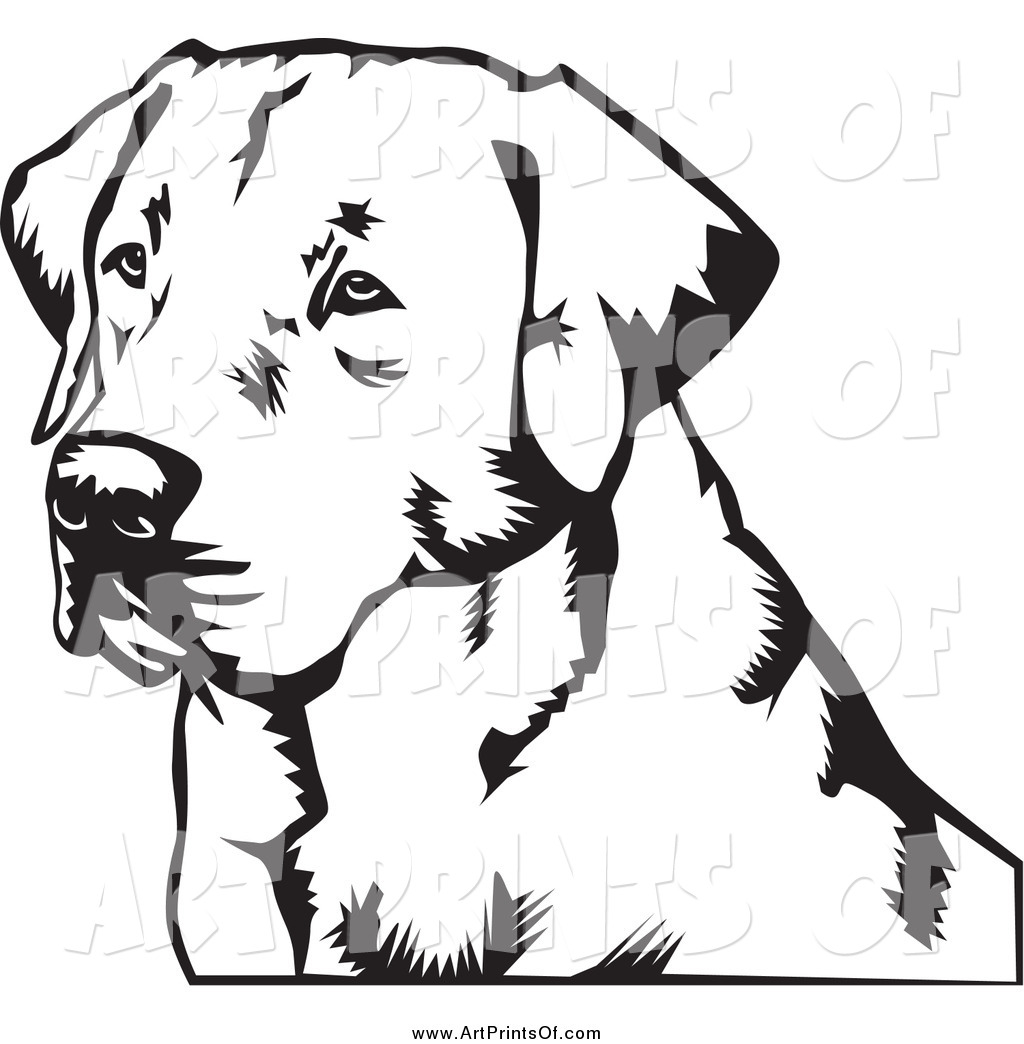 1024x1044 Labrador Clipart Black Lab Free Collection Download And Share