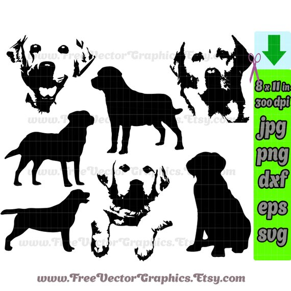 570x570 Labrador Dog Svg Vector Files Clip Art Lab Silhouette Yellow Etsy