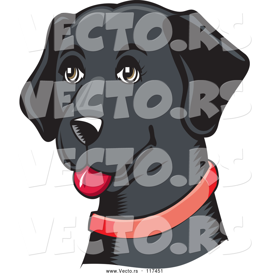 1024x1044 Vector Of Happy Black Lab Dog With A Red Collar By David Rey
